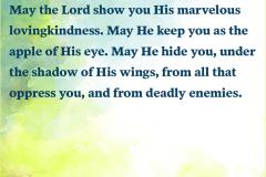 Marvelous Lovingkindness